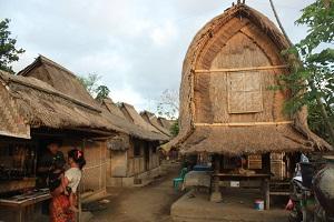 Деревня Сукараре. Тур Ломбок Бали