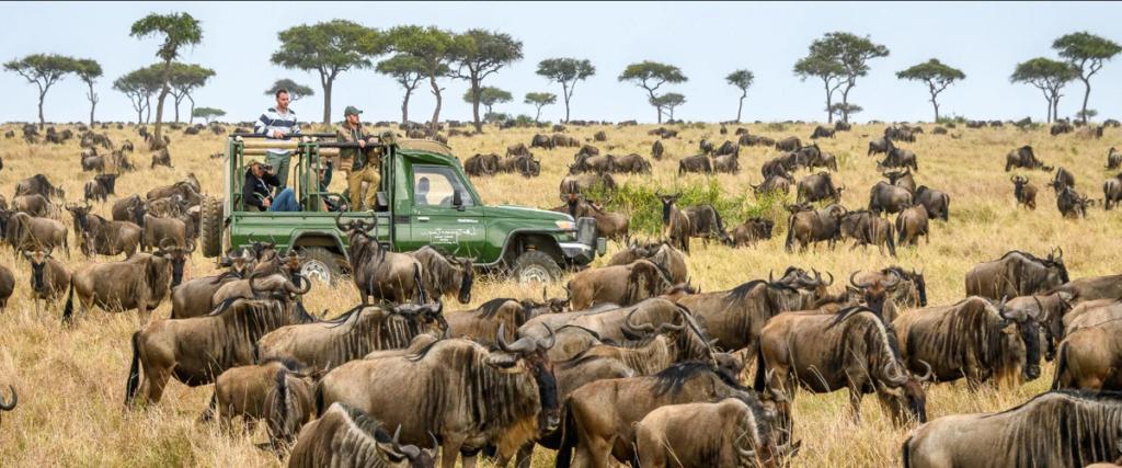 Туры в Танзанию 2021/2021