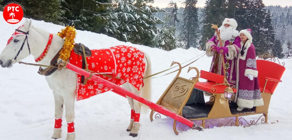 Новогодние туры из Перми по России к Тол Бабаю